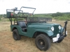 1959 Willys CJ-5 Jeep