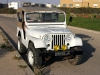 1957 Willys M38A1