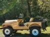 1961 Willys CJ-5