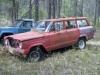 1963 J200 & Wagoneer
