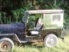 1963 Willys CJ-3B