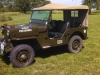 Willys CJ-3B Jeep