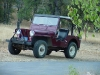 Willys Jeep CJ-3A