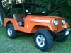 dave-mccarthy-willys-cj5