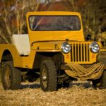 Kaiser Willys Photo Contest Winner!