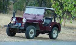 Willys CJ3A - Steve Allen