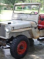 Kindra Beck's 1950 CJ-3A
