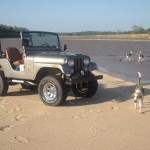 Kaiser Willys Jeep of the Week: 041