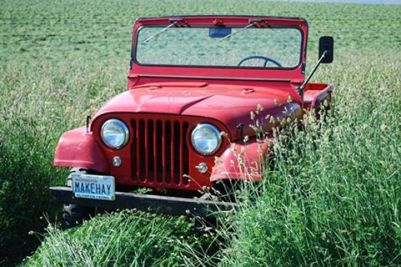 Bob & Anne Wieldraayer's 1961 CJ-5 Jeep