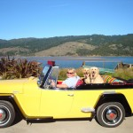 2014 Cross Country Jeepster Trip