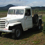 Matt Droege - 1951 Willys Truck