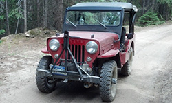 Steve Martin - 1954 Willys CJ-3B