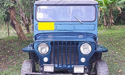 Jorge Amaya - 1952 Willys CJ-3A