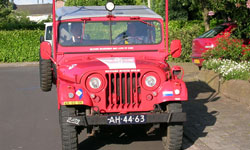 Henny Lechanteur - Nekaf M38A1 Netherlands Army Jeep
