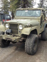Brittany Jacobsen's 1953 Willys M38A1