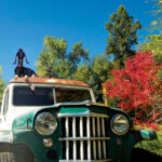 Willys Station Wagon – What More Could You Need?
