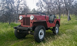 Brian Buswell's Willys CJ-B