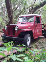 Yovani Crespo's 1948 Willys Truck