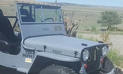 Ceci Sullivan - Willys Jeep