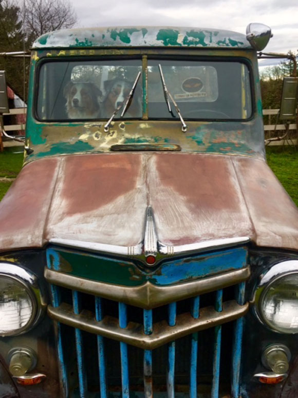 Rus Swartling's 1956 Willys Truck