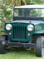 Manfred Willich's 1953 Willys CJ-3B
