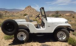 Will Coon - 1965 CJ-5