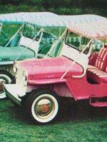 Surrey Gala Jeeps