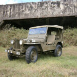 A Willys M38 Restored to its Military Glory