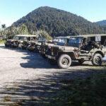 Armistice 100 Convoy – Willys Jeeps in New Zealand