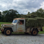 A 1949 Willys Work Truck for the New Farm