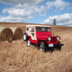 Best in Show – David Enderwick's 1952 Willys CJ-3A